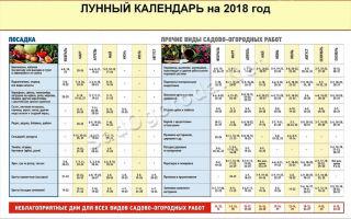 Лунный календарь высадки помидоров на 2018 год