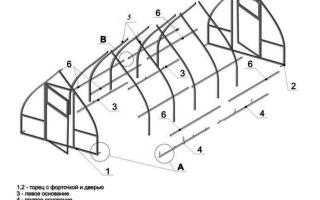 Кремлевская теплица из поликарбоната от производителя: характеристика видов и правила сборки