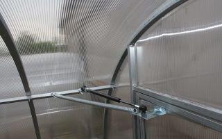 Дверь из поликарбоната для теплицы: характеристика и рекомендации по самостоятельной установке