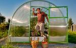 Применение поликарбоната: сибирские теплицы дают невиданные урожаи