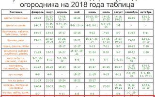 Лунный посевной календарь на январь 2018 года для садоводов и огородников