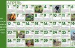 Лунный посевной календарь на апрель 2018 года для огородников и садоводов