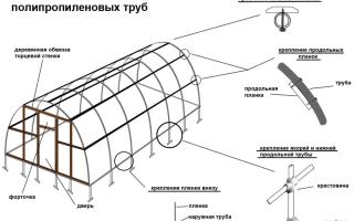 Особенности изготовления теплицы из полипропиленовых труб своими руками