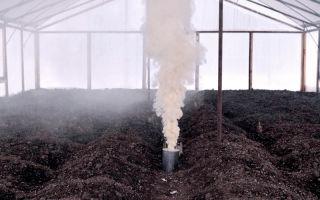 Чем и как нужно обработать теплицу после сбора урожая