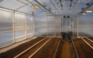 Технология изготовления зимних теплиц из поликарбоната с отоплением