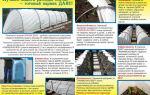 Парника даяс: особенности конструкции и правила установки