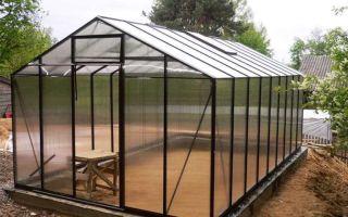 В помощь огороднику: что можно сажать после томатов?