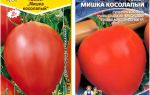 Томат мишка косолапый: характеристика сорта и отзывы огородников