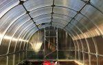 Как осуществляется обустройство теплицы из поликарбоната внутри