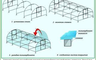 Методы крепления поликарбоната к теплице