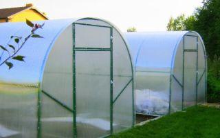 Стоит ли покупать теплицу солнечный домик?