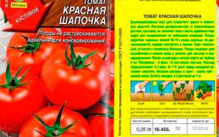 Характеристика сорта помидоров красная шапочка: отзывы с фото