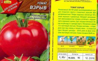 Сорт томата взрыв: характеристика и особенности посадки