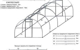Теплица сибирская: характеристика и правила сборки