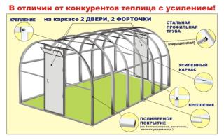 Теплицы урожай: характеристика видов и правила эксплуатации