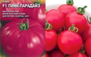 Сорт томата пинк парадайз f1: описание и условия выращивания