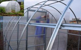 Оцинкованные теплицы: характеристика конструкций от производителя и изготовленных своими руками