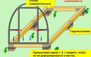Фундамент под теплицу из поликарбоната: выбор вида и технология изготовления