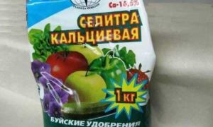 Кальциевая селитра: применение для подкормки томатов