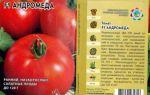 Характеристика помидоров андромеда: отзывы и фото