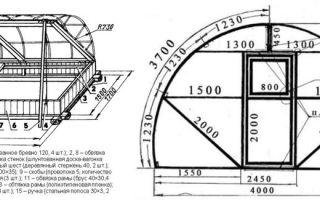 Парник ракушка: характеристика конструкции и особенности изготовления своими руками