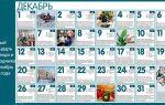 Лунный посевной календарь на декабрь 2018 года