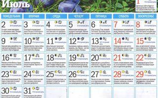 Лунный календарь садовода и огородника на июль 2018 года