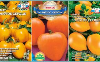 Характеристика томата золотое сердце: отзывы и фото