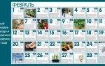 Лунный календарь огородников и садоводов на февраль 2018 года