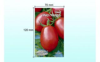 Описание, фото и основные характеристики томатов рио гранде