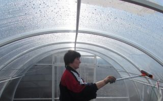 Технология подготовки теплицы к зиме