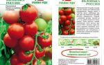Характеристика томата яблонька россии: отзывы и фото