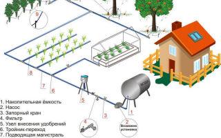 Системы орошения: видовое разнообразие и особенности самостоятельного монтажа