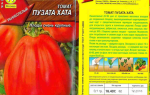 Яблок-помидор: плод селекционеров или миф?