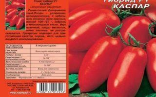 Томат каспар: основная характеристика и описание сорта