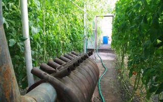 Как выбрать котел для теплиц: советы опытных фермеров