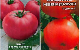 Характеристика универсального томата видимо невидимо: отзывы и фото