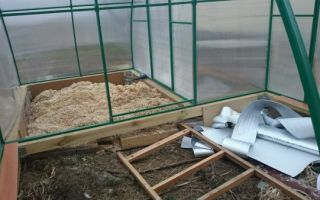 Как соорудить курятник в теплице из поликарбоната
