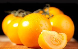 Желтые и красные помидоры: лучшие сорта, польза и вред
