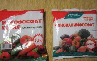 Удобрения для томатов: применение монофосфата калия и других подкормок