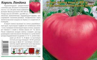 Описание и особенности сорта томатов король королей: отзывы и фото