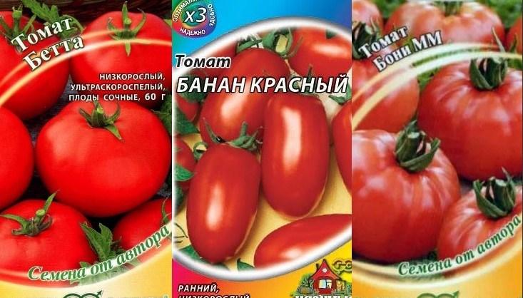 Сорта низкорослых томатов для открытого грунта без пасынкования4