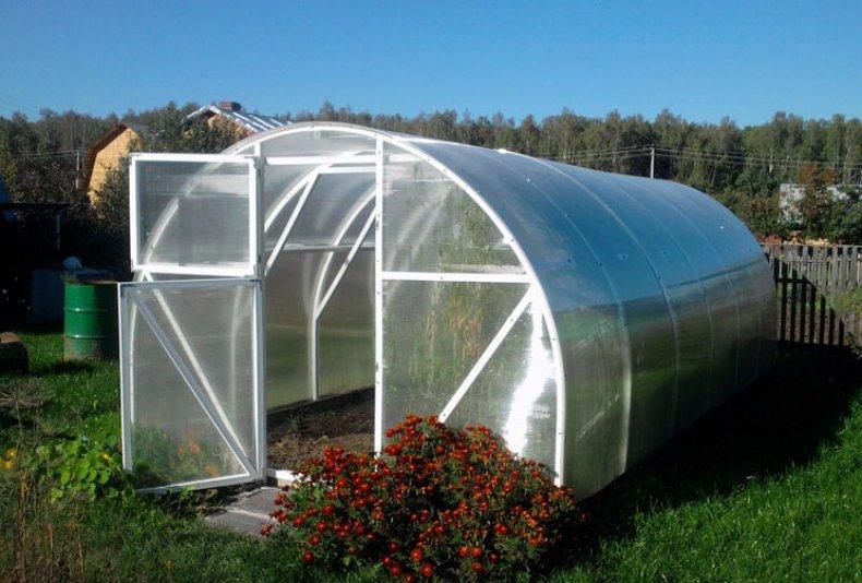 Теплица синьор помидор: техническая характеристика и преимущества1
